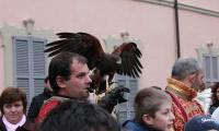 falconieri02.jpg