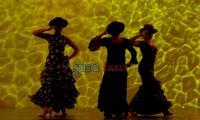 flamenco07.jpg